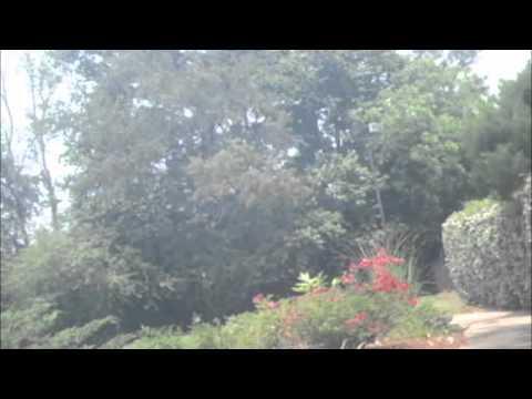 GoPro Wrist Cam Pool Test
