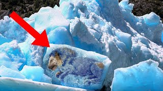 10 Craziest Discoveries Found Frozen In Ice