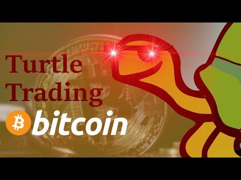 Kaip prekiauti usd už bitcoin