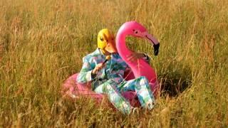 Hartz 4 Und Der Tag Gehört Dir    Der Zweite Partyhit Von Ingo Ohne Flamingo