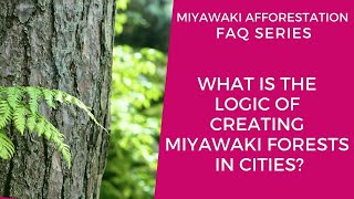 What is the Logic of Creating Miyawaki Forests in Cities?
