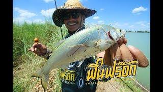FIN FROG # แข่งตกปลาแปบ (หน้าดิน)