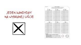 Film do artykułu: Wybory do europarlamentu...