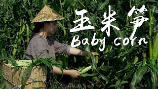 Baby Corn: It has the fragrance of corn as well as the crispiness of bamboo shoot