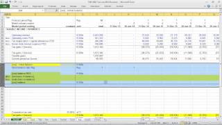 T201: Tax Loss Carryforwards