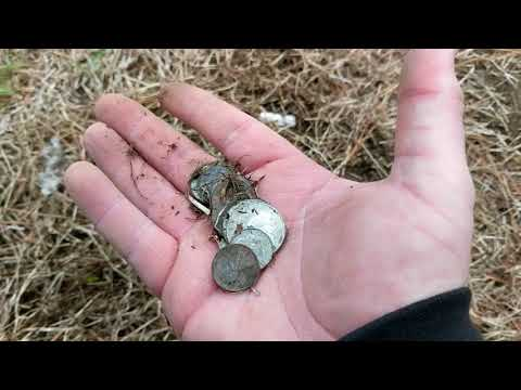 New intro. First hunt of 2018 Nokta Impact w/ IM19 coil finds badge