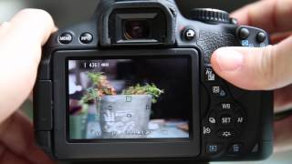 Canon T4i(650D) Live view options and Focusing Tips