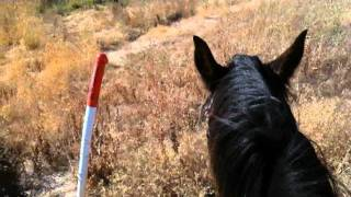Dealing with Trains on Horse or Horseback - Train Run Away - Part 1 of 3 - Rick Gore Horsemanship