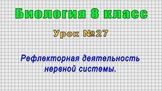 Биология 8 класс Урок 27