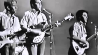 The Beach Boys - Johnny B. Goode (Shindig - Dec 23, 1964)