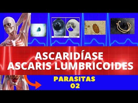 Parazita 2020