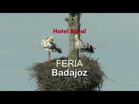 Hotel Rural LAS CIGÜEÑAS EN PARADA Y FONDA
