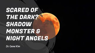 SCARED of the Dark? Shadow Monster & Night Angels - Dr. Gene Kim