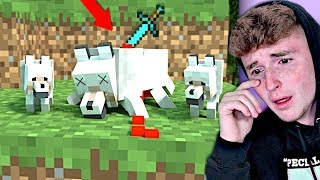 The SADDEST Minecraft Animations On The Internet.. (YOU WILL CRY)
