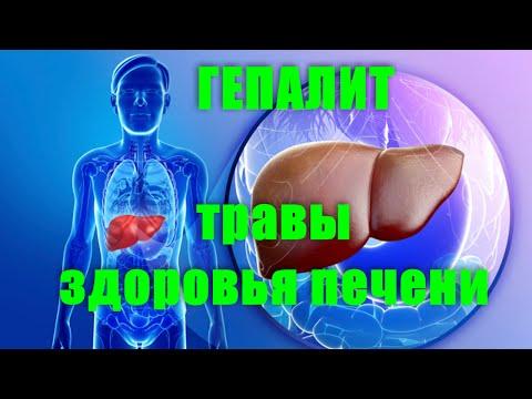 Схемы лечение токсического гепатита