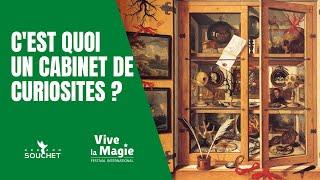 Vignette de C'est quoi un cabinet de curiosités ?