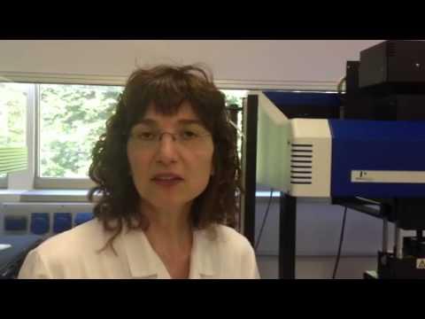 Il laboratorio screening Insubrias biopark