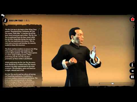 Video of Wing Chun Kung Fu: SLT