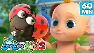 Skip To My Lou   The BEST SONGS For Kids | LooLoo Kids