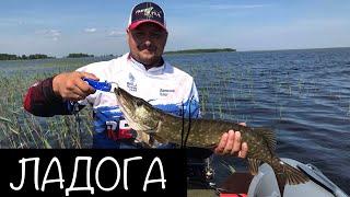 Рыбалка в ленинградской области на ладожском озере