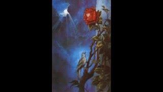 Оскар Уайльд - Соловей и роза фото