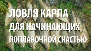Удочка для рыбалки на карпа