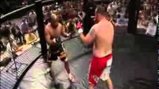 бокс против боев без правил