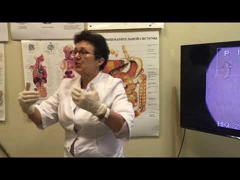 Способы лечения простатита тыквенными семечками