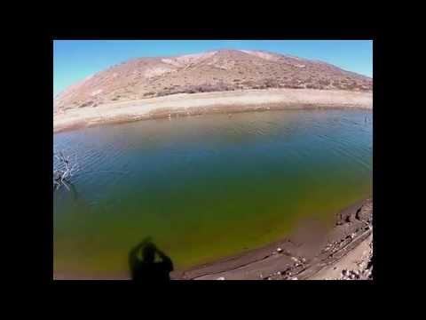 Video de agua dulce de Pejerrey subido por Rio Dorado Lodge
