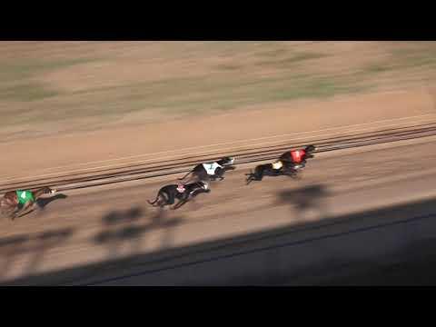 Race 9