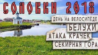 Занимались ли монахи соловецкого монастыря рыбной ловлей