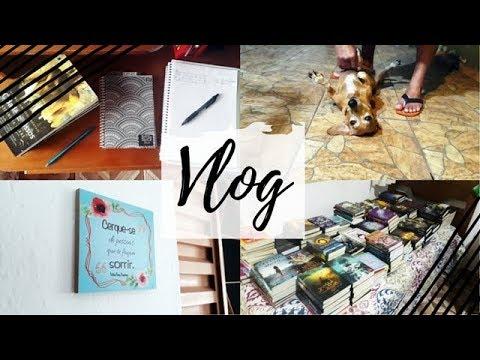Vlog: Feira do livro, bastidores do VEDA, Vingadores Ultimato e mais | VEDA #1 | Um Livro e Só