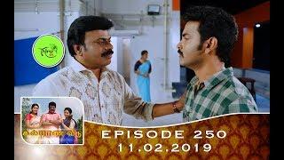 Kalyana Veedu   Tamil Serial   Episode 250   11/02/19  Sun Tv  Thiru Tv