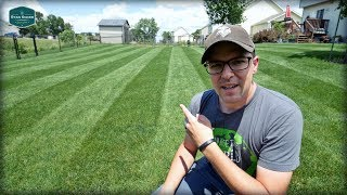 DIY How to Toro Lawn Striping System review  Toro lawn