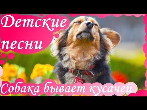 Детские песни - Собака бывает кусачей.