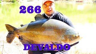 Programa Fishingtur na Tv 266 - Pesque Pague do Devaldo