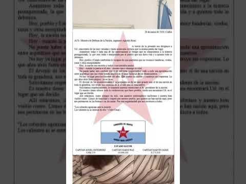 """""""A estos terroristas el Estado les pagó indemnizaciones"""", dijo la abogada del  CELTYV tras la carta de tres """"capitanes"""" del ERP"""