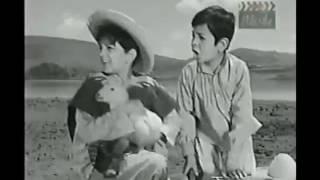 El Joven Juarez