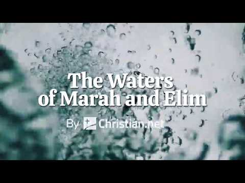 Exodus 15: The Waters of Marah and Elim | Bible Story (2020)