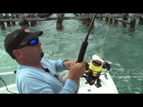 New PENN® Spinfisher® V Product Video