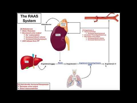 Neovisno intervencije hipertenzije