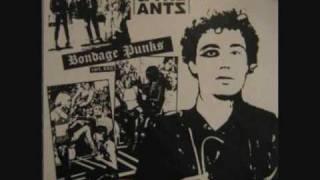 Adam and  the  Antz - Deutscher girls live