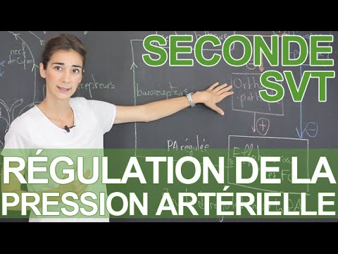 Moniteur de tension artérielle Valens SAI-01-2 Instruction