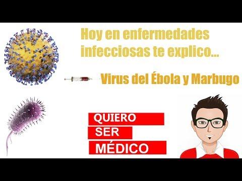 Parazita fertőzés érzései