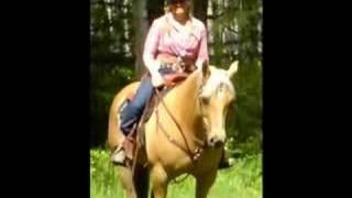 Palomino Appendix Quarter Horse Mare. SOLD!