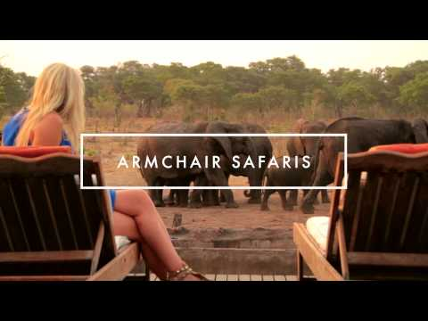 If you are in search of unique wildlife encounters, thirst for adventure and want a Safari rich with African wildlife and culture, then you have found the ideal safari partner. African Bush Camps offers you a variety of exclusive safari camps to fit today's modern traveller. Whether it be on the mighty Zambezi River, in the Okavango Delta or soaring over the Linyanti Marsh, we invite you to join us for an incredible and memorable journey.