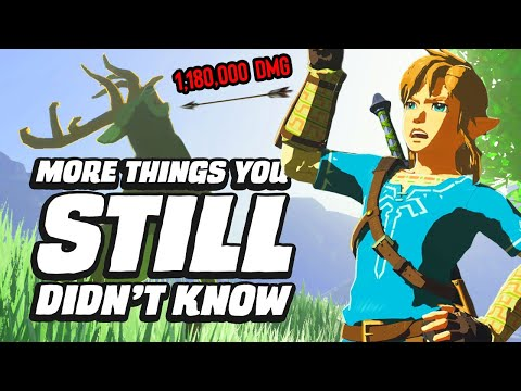 25 MORE Things You STILL Didn't Know In Zelda Breath Of The Wild