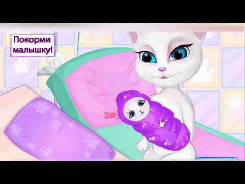 Беременная Кошка Анжела Стала Мамой