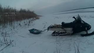 Налим ловля зимой на енисее