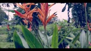 CA BETHEL INTERNATIONAL DOCUMENTARY VIDEOGRAPHY REEL